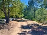 8620 River Meadows Road - Photo 3