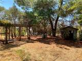 19275 Coyle Springs Road - Photo 29