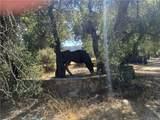 0 Hacienda Drive - Photo 12