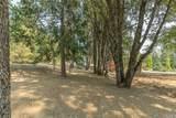 5514 Meadow Lane - Photo 69