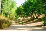2562 Castellon Terrace - Photo 63