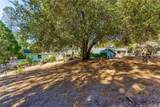 39367 Pine Ridge Road - Photo 53
