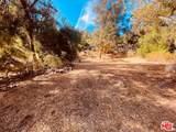 28 Topanga Skyline Drive - Photo 24