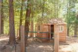 4933 Tiger Lily Drive - Photo 46