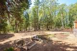 4933 Tiger Lily Drive - Photo 47