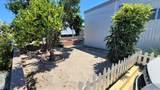 19 Bahia Lane - Photo 25