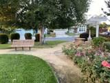 1227 Blue Parrot Court - Photo 23