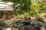205 Canyon Highlands Drive - Photo 47