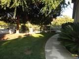 46400 Sandia Creek Drive - Photo 24