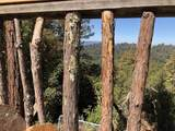 3500 Bear Canyon Road - Photo 10