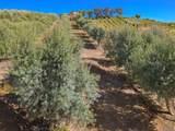 40650 Sierra Maria Road - Photo 35