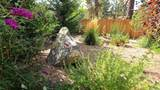 1128 Mount Doble Drive - Photo 38