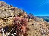 137 Fox Trail - Photo 12