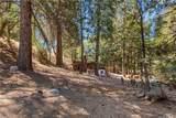 2209 Spring Oak Drive - Photo 6