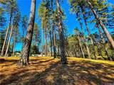 6294 Virginia Way - Photo 6