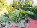 901 Coit Tower Way - Photo 23