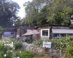 501 Quail Gardens Drive - Photo 4