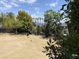 1254 Sunset Plaza Drive - Photo 2