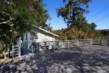 431 Loma Prieta Drive - Photo 6