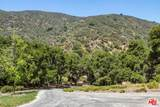 3100 Mandeville Canyon Road - Photo 6