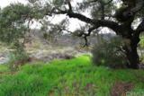32633 Trabuco Creek Road - Photo 12