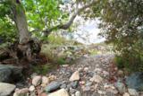 32633 Trabuco Creek Road - Photo 17