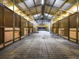 39239 Calle Bellagio - Photo 43