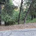 0 Parkland Drive - Photo 5