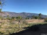 14229 Pauma Vista Drive - Photo 33