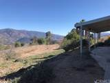 14229 Pauma Vista Drive - Photo 34