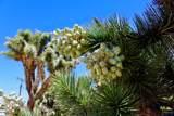 56604 Taos Trail - Photo 26