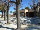 28314 Via Cascadita - Photo 17