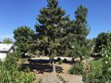 525 El Norte Pkwy - Photo 5