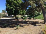 525 El Norte Pkwy - Photo 6