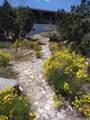 11046 Juniper Hills Road - Photo 12