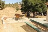 33238 Agua Dulce Canyon Road - Photo 5