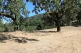 39 Arroyo Sequoia - Photo 3
