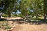 45901 Sandia Creek Drive - Photo 11