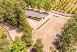 45901 Sandia Creek Drive - Photo 4
