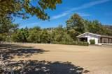 45901 Sandia Creek Drive - Photo 10