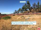 33340 Mulholland Highway - Photo 10