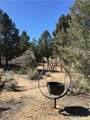 0 Sierra Trail - Photo 1