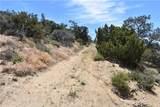 1 Vac/Vic Dusty Tal/Mt Emma Road - Photo 1