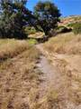 17342 Santiago Canyon Road - Photo 1