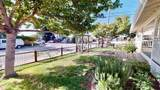 203 San Juan Avenue - Photo 4