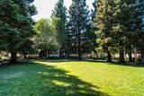 703 San Conrado Terrace - Photo 19