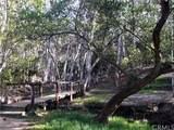 24931 Timberwood Way - Photo 10
