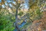 11071 Van Dorn Reservoir Road - Photo 36