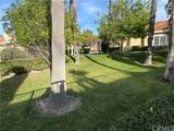 28911 Paseo Theresa - Photo 21