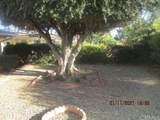 29049 Thornhill - Photo 30